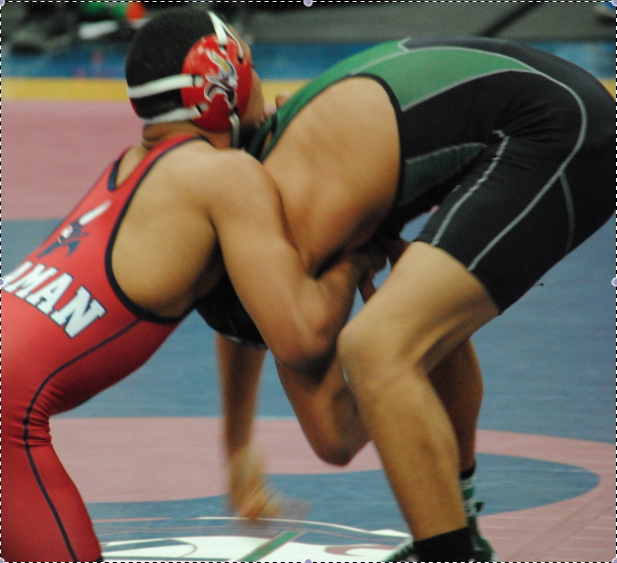 Wrestling maintains high hopes for state