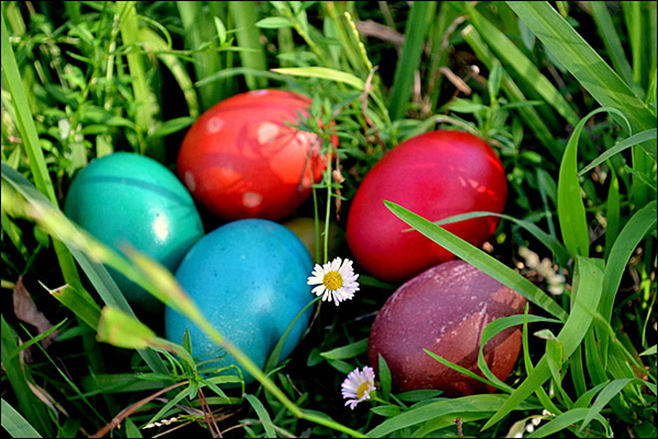 National Honor Society contributes to Shawnee North Community Center egg hunt