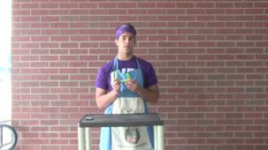 Cheff Chaffee Presents Celery