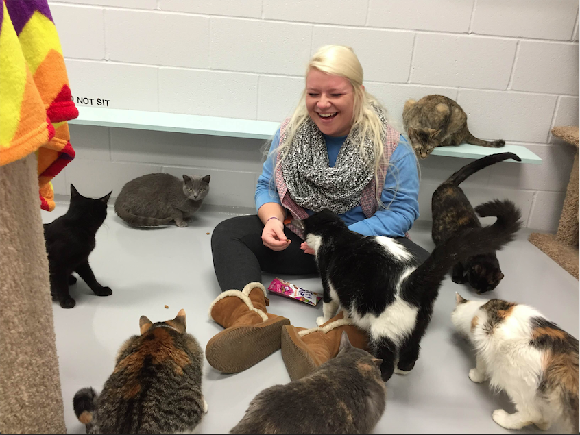 Humane society provides volunteer opportunities, shelter for rescues