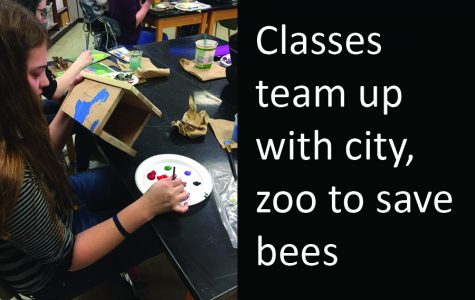 Classes team up with city, zoo to save bees