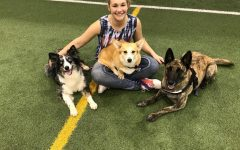 Award-winning trainer gives tips to pet owners