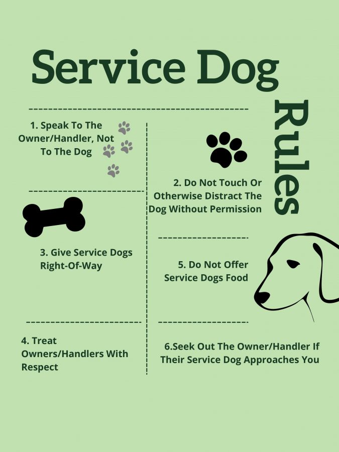 Kloies+Rules%3A+How+to+treat+a+service+dog