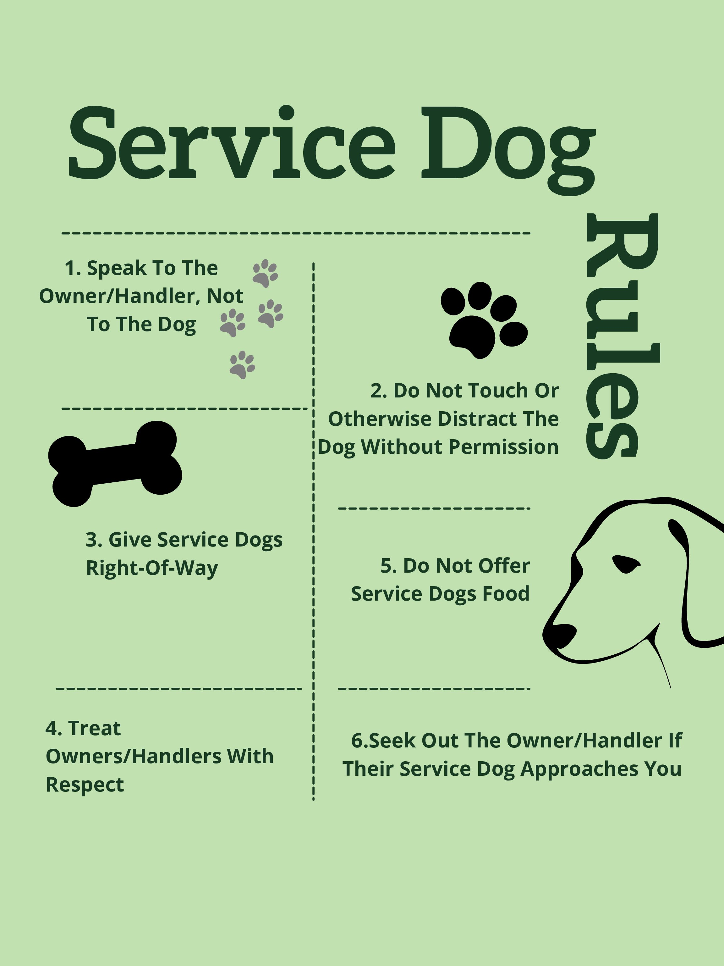 Kloies Rules: How to treat a service dog