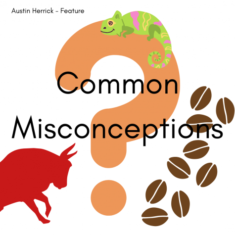 Common Misconceptions that you may believe in
